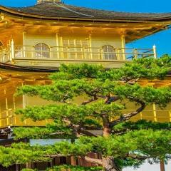 Le Japon Au pays du Soleil-Levant 9 octobre au 21 octobre 2017