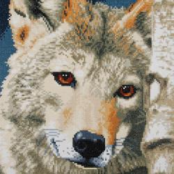 Loup 0184321