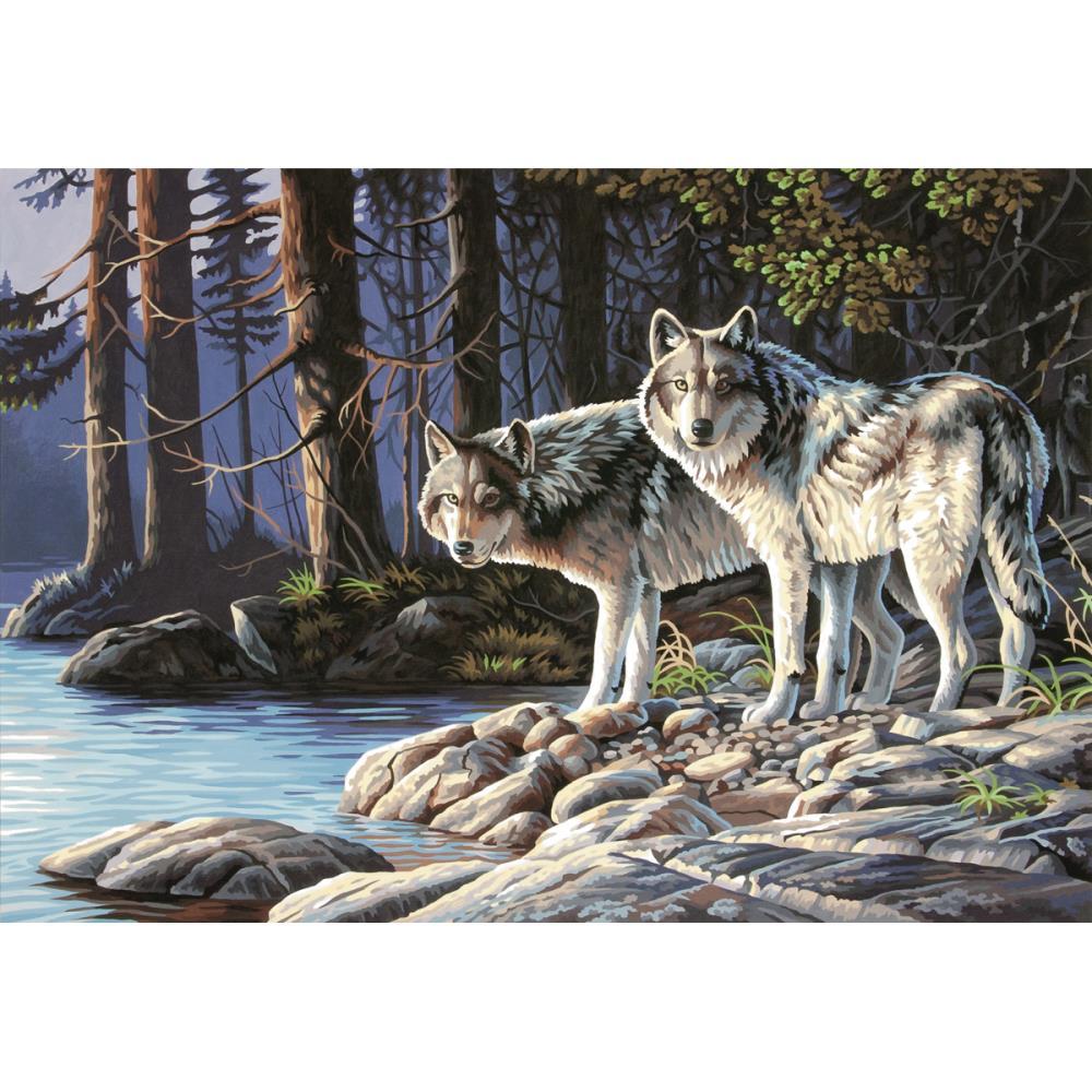 Loup gris 91445