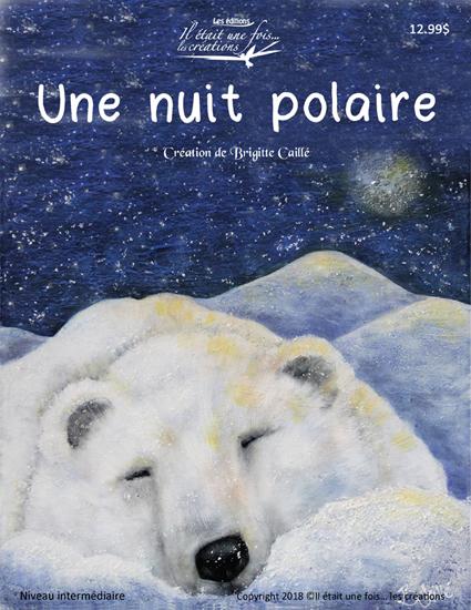 Une nuit polaire