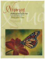 Papillon sur Hémérocalle rouge