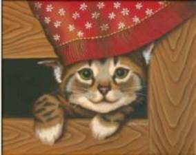 Mon chaton charlie