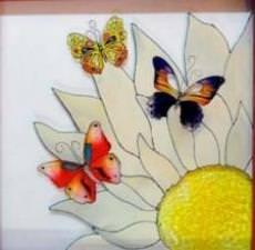 Vive les papillons