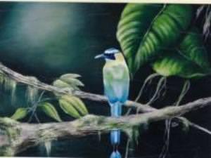 L'oiseau exotique