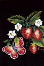 Sweet Strawberry butterfly