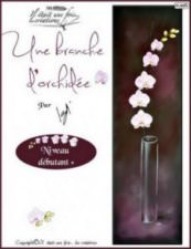 Une branche d'orchidées