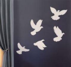 Envolée de colombe
