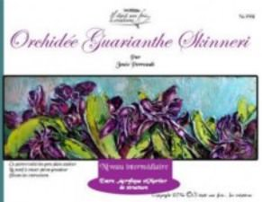 Orchidée Guarianthe Skinneri