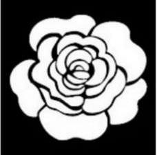 Rose Unique