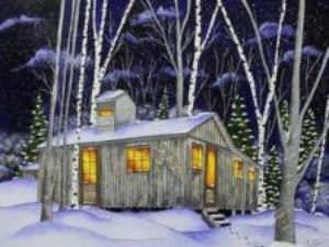 Une nuit à la cabane