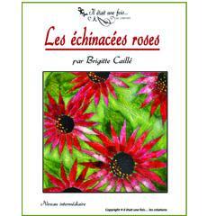 Les échinacées roses