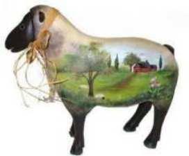 Paysage sur mouton