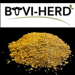 Bovi-herd