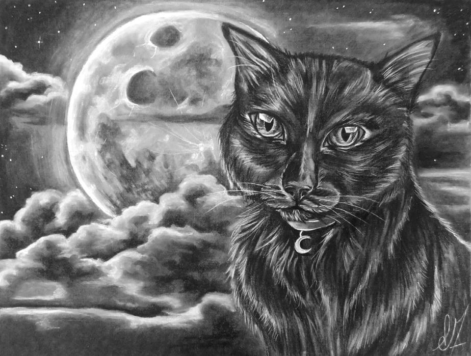 # 123 Magie noir par Emilie Forcier