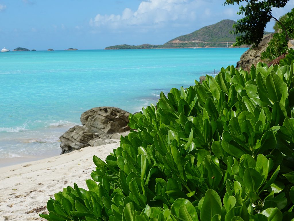 Antigua & Barbuda (Caraïbes)